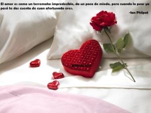 Rosa del Amor_800